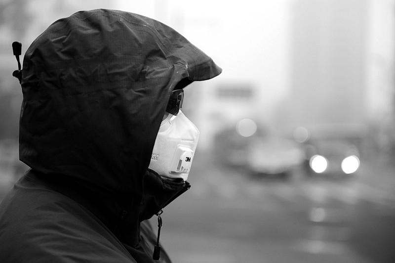 改善室内空气质量,你首先想到是谁?